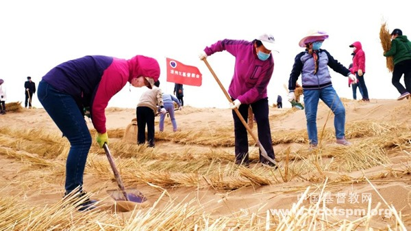 筑牢屏障 永保绿洲——甘肃省武威市教会组织防风治沙活动